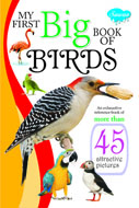 My First Big Book of BIRDS