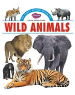 My First Board Book of  Wild Animals
