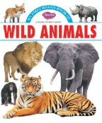 My First Board Book Big Picture Wild Animals