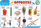 Educational Table Mats Opposites