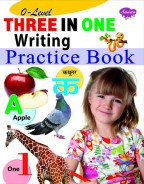 0-Level Three in One Writing Practice Book