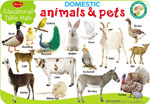 Educational Table Mats Domestic Animals & Pets