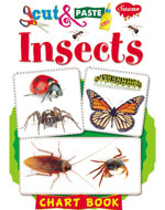 Insects (Chart Book)