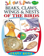 Cut & Paste Beaks, claws, wings & Nests of The Birds